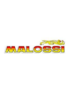 GRUPPO TERMICO MALOSSI D.47 PER H2O HI TECH